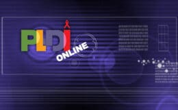 PLDI virtual background image